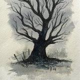 best climbing tree