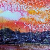 firefly pond