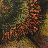 stamen abstract II