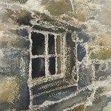 woodstore window