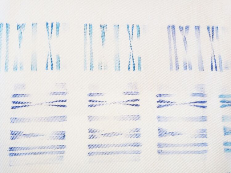 Barcode, available in tea towels, bags and pouches