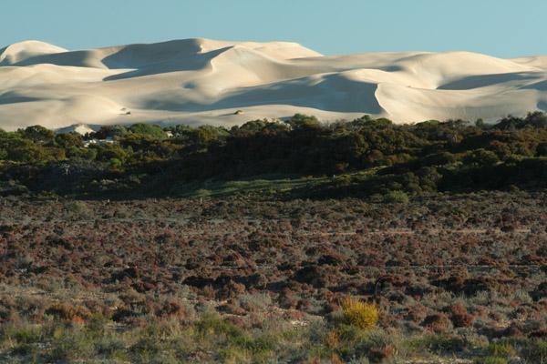 Pavlova Dunes