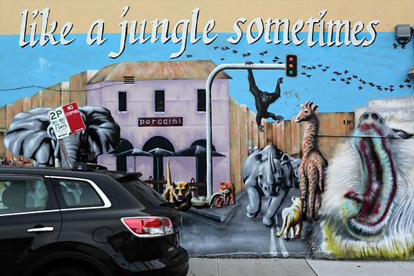 Like a Jungle Sometimes
