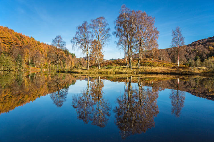 Autumn at Loch Tummel
