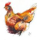 'Little Brown Hen'
