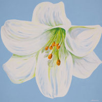 'Anna- Marie' SOLD