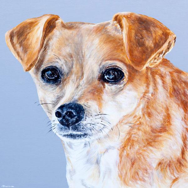'Daisy Dog'