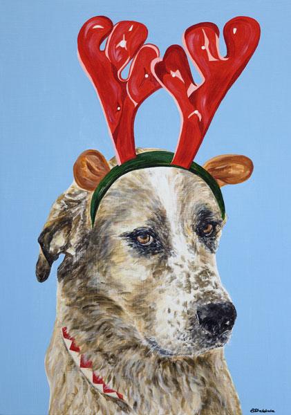 'Harvey at Christmas'