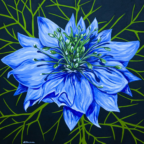 'Love in a mist' SOLD