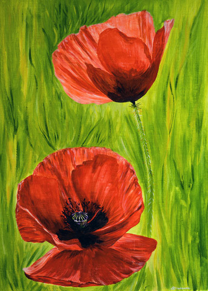 'Poppies' SOLD