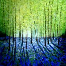 Wild Wood Blue