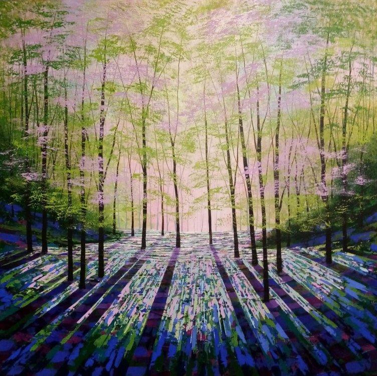 Woodland Aurora
