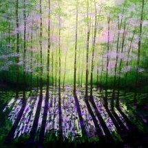 A Quiet Wood