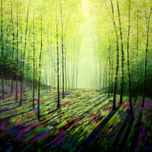 Forest Secret