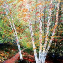 Mellow Tones, Sunlit Birches.