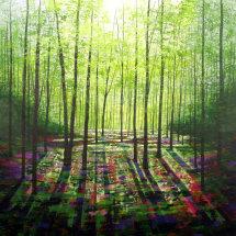 Serenity Wood