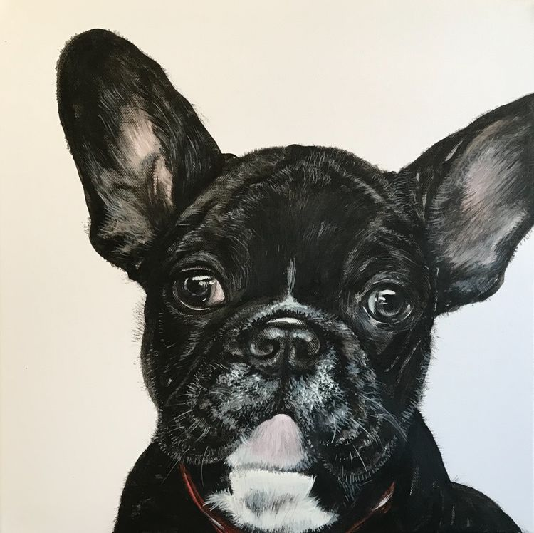 French bulldog SOLD