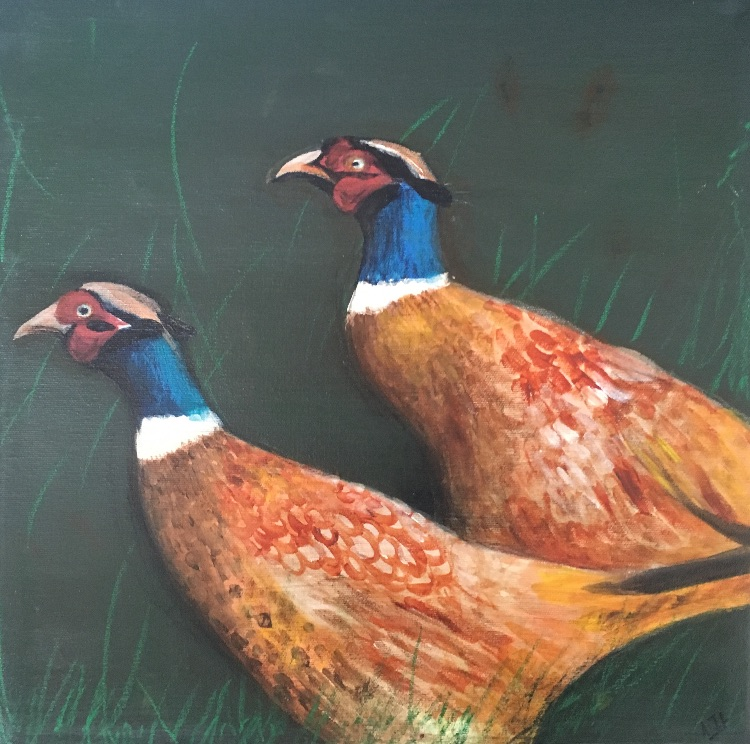 A fine pair of pheasant