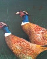 A fine pair of pheasant