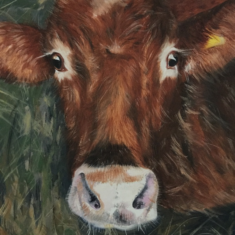Brown cow SOLD