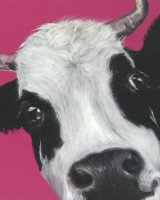 Pink cow SOLD
