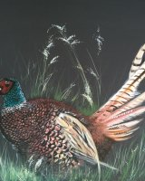 Pheasant on chocolate SOLD