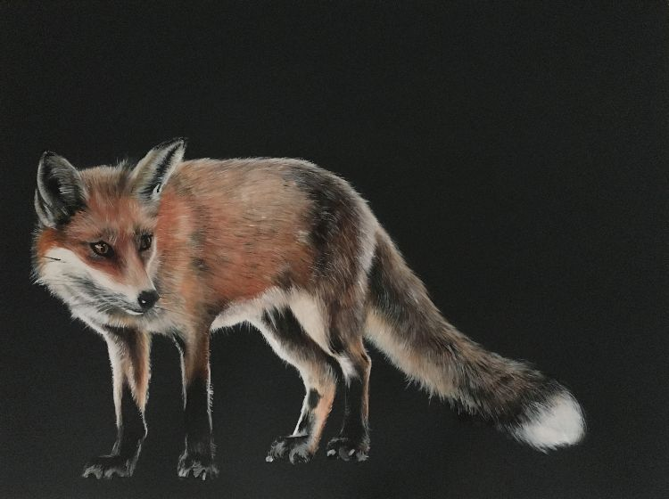 Fox in the moonlight SOLD