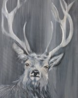 Grey stag SOLD