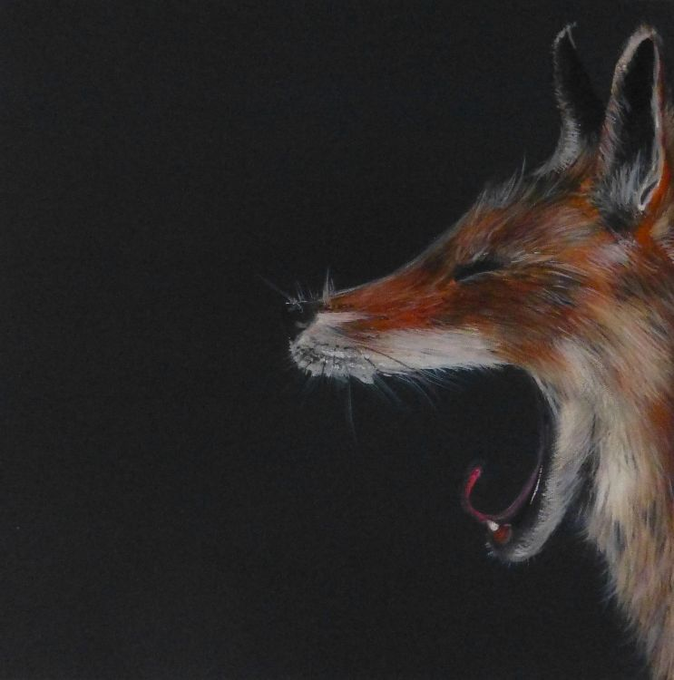 Yawning fox SOLD