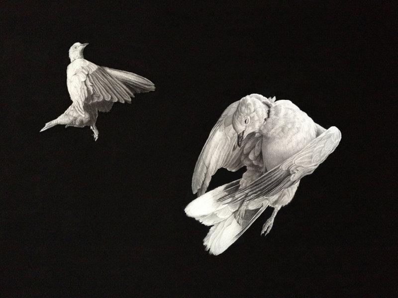 'Ascension'