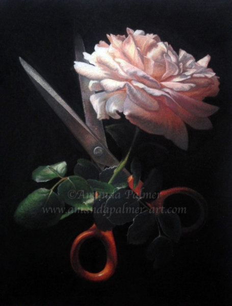 'The Scissors and The Rose'
