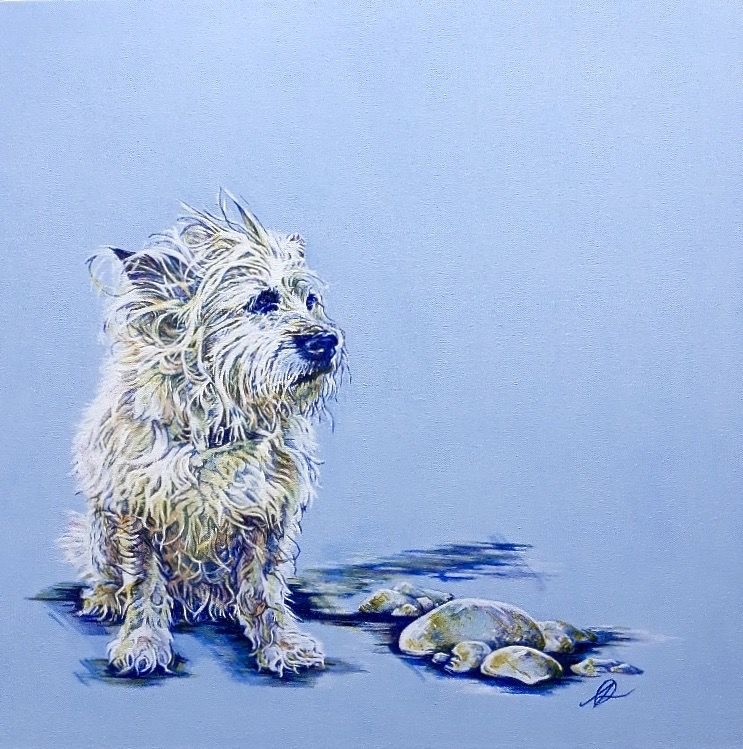 Wet Cairn Terrier Dog Portrait Commission in Acrylic by Amanda Roussos