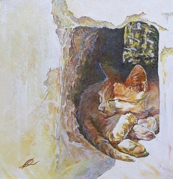 Cat portrait of a cat in a hole in a wll