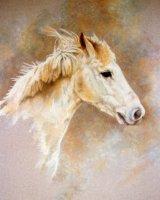 Pony Commission