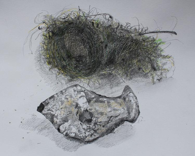 Bird's Nest and Flint