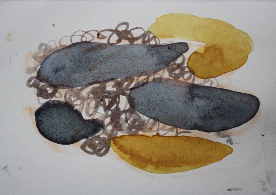 Rosehip, Sloe, Alder buckthorn bark and Oak gall ink