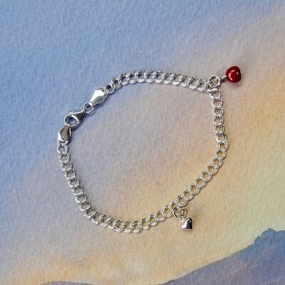 Sterling Silver Double Curb Chain with Charms £35