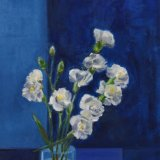 Carnations in Blue Surrounding.