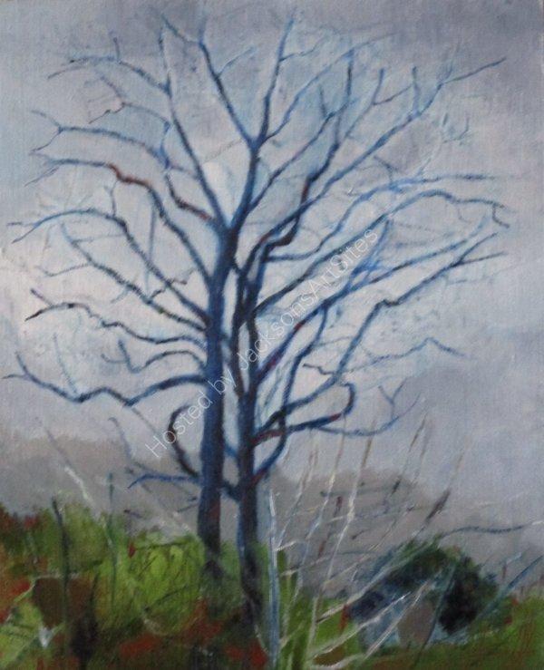January Trees ©