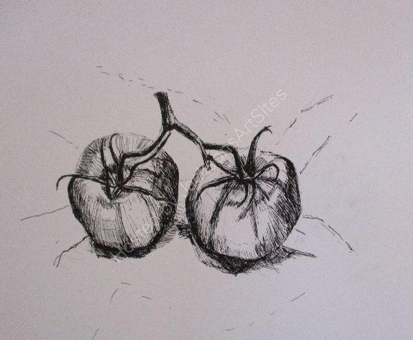 Large Tomatoes ©
