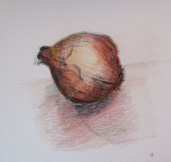 Onion ©