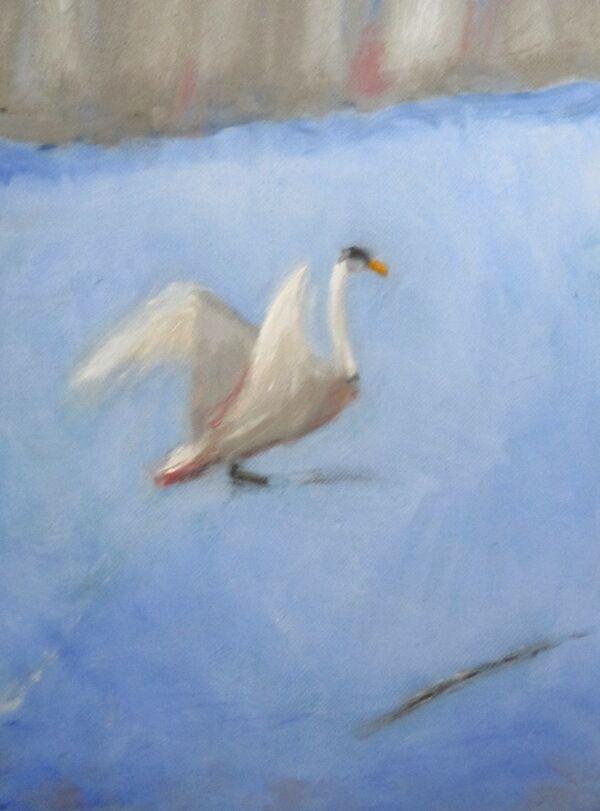 Swan on ice 19-02-21 ©