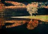 Buttermere Reflections : John Twizell  : Score 11