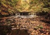 Autumn Falls : John Twizell
