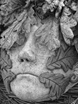 1st Face in the leaves - Penny Horserman