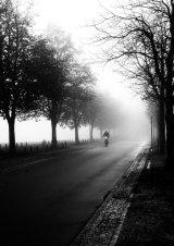 2nd Foggy Morning - Val Atkinson