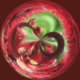2nd Poison Plant Sarin : Harry Wilkinson