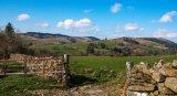3rd Helen Holmes - Gallaway Hills