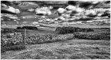 3rd Mervyn Williams - Hadrians Wall