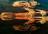 Reflections In Buttermere : John Twizell : Score 10 Portfolio Entry